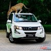 Mahindra-New-Age-XUV500-facelift-images-2
