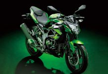 2015 Kawasaki Z250SL Front (India-Specific Kawasaki 200 CC)