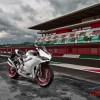 Ducati Panigale 959 (4)