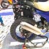 mojo dirt bike (4)