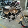 Bajaj Avenger Street 220 launched in gold colour-6