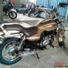 Bajaj Avenger Street 220 launched in gold colour-7