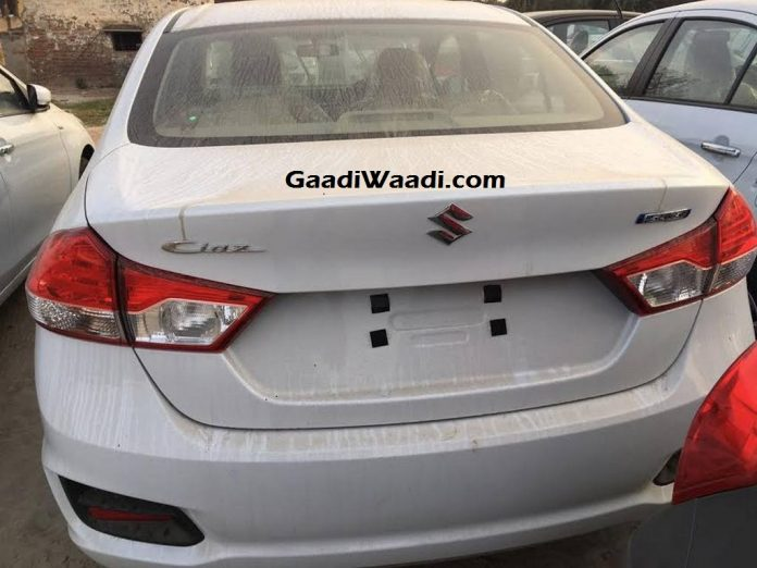 Maruti Suzuki Emblem and Variant Badge Dropped from Ciaz