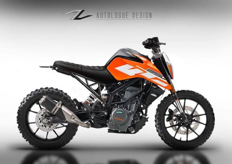 customised Duke 250 1