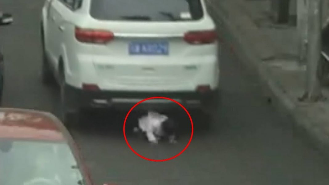 Two-Year-Old Kid Escapes Being Run Over by SUVs