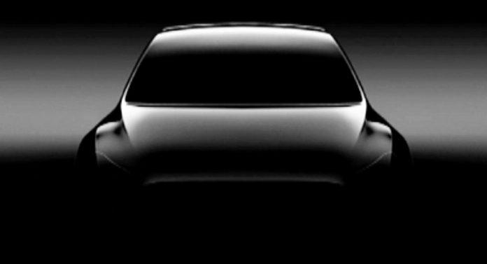 Tesla Model Y Teased