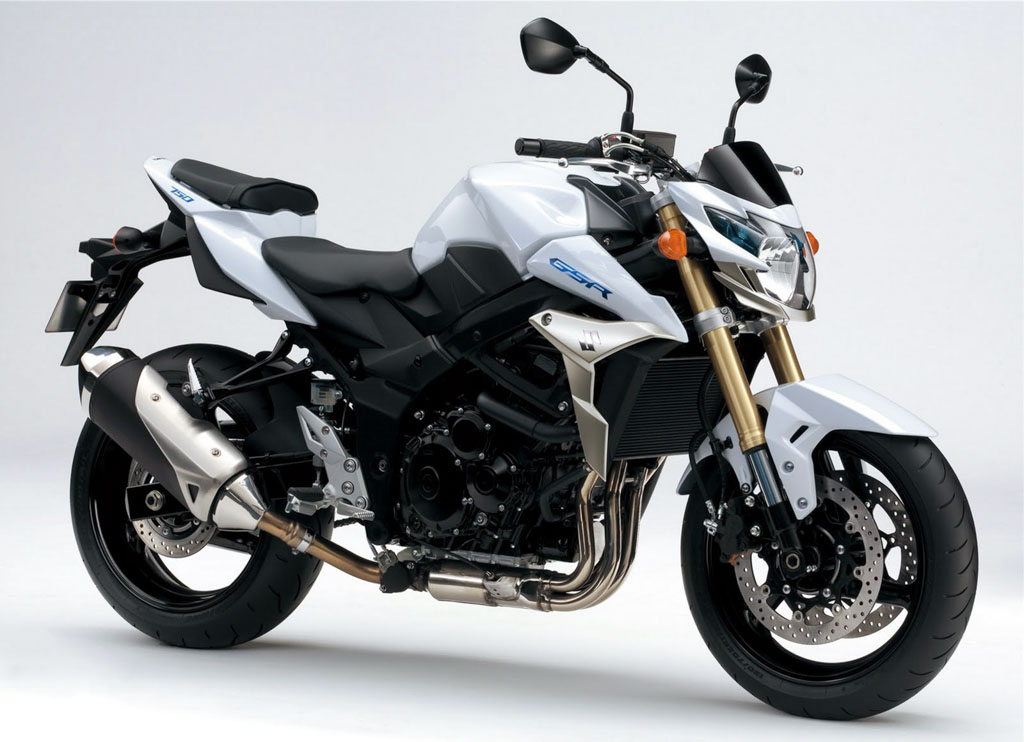SUZUKI GIXXER 250 INDIA (REPRESENTATIONAL PHOTO)