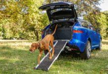 Jaguar Pet Products (Jaguar Pet Accessory Packs) 5