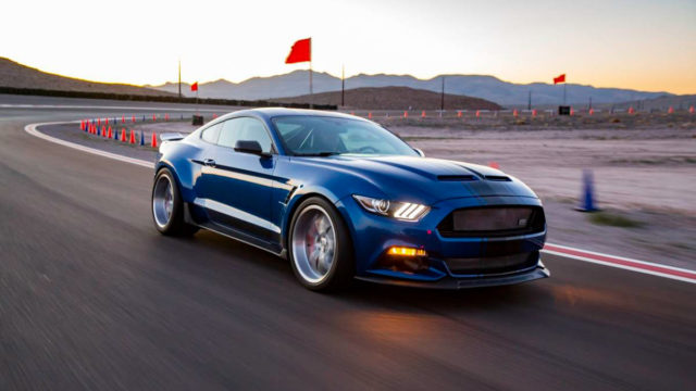 Shelby Super Snake India 2