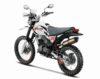 Hero XPulse 200 Rally Kit Edition 3