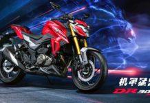 2021 Suzuki Haojue DR 300-1-2
